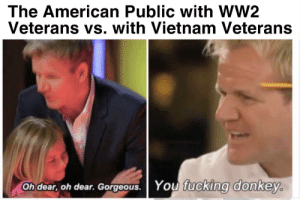 This is so sad can we Napalm Vietnam?: The American Public with wW2  Veterans vs. with Vietnam Veterans  eitiddywaluigi  Oh dear, oh dear. Gorgeous. You fucking donkey. This is so sad can we Napalm Vietnam?