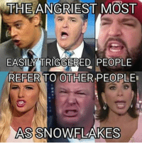 Referance: THE ANGRIEST MOST  EASILY TRIGGERED PEOPLE  REFER TO OTHER PEOPLE  ASSNOWFLAKES