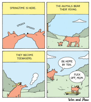 warandpeas:  Springtime: THE ANIMALS BEAR  THEIR YOUNG.  SPRINGTIME IS HERE.  SMOOCH  SMOOCH  THEY BECOME  TEENAGERS.  BE HOME  BY TEN.  FUCK  OFF, MOM.  War and eao warandpeas:  Springtime