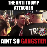 🤣🤣🤣🤣 I am dying. Thanks to my boy @minorityredefine.inc for helping make this epic video 🤣: THE ANTI TRUMP  ATTACKER  TR  Est  1775  2D  AINT SO GANGSTER 🤣🤣🤣🤣 I am dying. Thanks to my boy @minorityredefine.inc for helping make this epic video 🤣