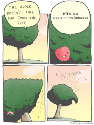 Apple, Fall, and Tree: THE APPLE  DOESN'T FALL  FAR FROM THE  TREE  HTML is a  programming language  ト.VY 000SH Coding in HTML