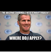 Arizona Cardinals, Nfl, and Arizona: THE ARIZONA  CARDINALS NEEDAOUARTERBACKn  WHERE DOI APPLYP Oh no...