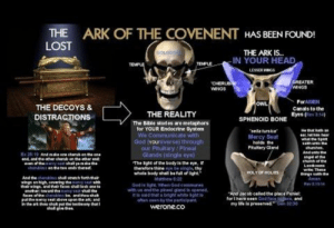 The Ark of the Covenant has been found: THE ARK OF THE COVENENT HAS BEEN FOUND!  LOST  THE ARK IS..  IN YOUR HEAD  LESSER WINGS  GOLGOT  TEMPL  TE  CHERUB  WNG3  GREATER  WNGS  ForAMEN  Canals to the  Eyes (Rev 3:14  OWL  THE DECOYS 8  DISTRACTIONS  THE REALITY  SPHENOID BONE  The Bible stories are metaphors  for YOUR Endocrine System  elatuke  Mercy Seat  holds the  Ptutary Gland  We Communicate with  what the Spit  God frouniverse) through  our Pitutary Pineal  Glands (single eye)  churche  Andunbo the  angel eruhe  25:19 And ake one charub on the one  ตาตา of th.cs erey gear shall perik  The light of the body is the eye,  chendins  two ends thereof  Whole body shall be ful o light  Malthew 6:2  God ie ligik When God commune  with ue and the pineal gland e epened  It le said that a bripht white ight lo  often seen by th. participant.  werone.co  hings satn the  Amen  their winge, and their faces shall look  * oo  And Jecob called the place Penil  foet havesn God face tglace, and  ocst ofthe cherubins be. and thou thak The Ark of the Covenant has been found