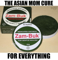 Asian, Fall, and Memes: THE ASIAN MOM CURE  ATED OINTMEN  pic Zam-Buk  Improved Formulation  GENTLE H  SG FairPrice  MEDICATED OINTMENT  Zam-Buk  FOR GENTLE HEALING  25g  FOREVERYTHING Fall down? Rub Zam-Buk! Flu? Smell Zam-Buk! Heart Break? Can Zam-Buk also anot?