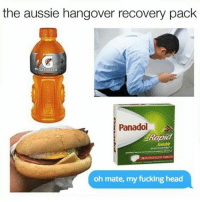 Fucking, Gatorade, and Head: the aussie hangover recovery pack  GATORADE  Panadol  Rapid  20EFFERVESCENT TABLET  oh mate, my fucking head Stay safe