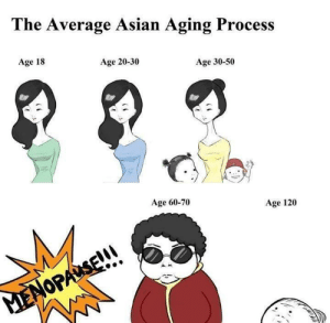 Asian, Dank, and Memes: The Average Asian Aging Process  Age 18  Age 20-30  Age 30-50  Age 60-70  Age 120  MENOPAUSE!! Stay young forever! by mike2k24 FOLLOW 4 MORE MEMES.