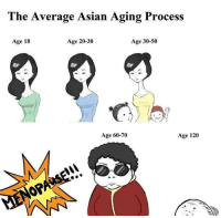 Asian, Memes, and Asians: The Average Asian Aging Process  Age 20-30  Age 30-50  Age 18  Age 60-70  Age 120 Aging Asians..