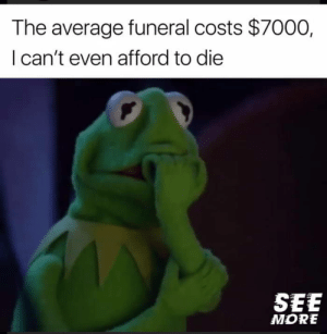 Life, Funeral, and More: The average funeral costs $7000,  I can't even afford to die  SEE  MORE Welcome to the life of a millennial.