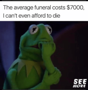 Life, Tumblr, and Blog: The average funeral costs $7000,  I can't even afford to die  SEE  MORE awesomesthesia:  Welcome to the life of a millennial.