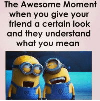 Double Tap if you've done this 👻 besties understand secret language 😝 Bff Stories ➡️ @ommy_007 . Minion meme funny trolls Best friend things: The Awesome Moment  when you give your  friend a certain look  and they understand  what you mean Double Tap if you've done this 👻 besties understand secret language 😝 Bff Stories ➡️ @ommy_007 . Minion meme funny trolls Best friend things