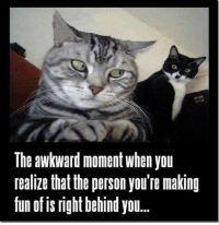 Memes, Awkward, and Awkward Moment: The awkward moment when you  realize that the person you're making  fun of is right behind you Whoops.