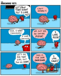 Awkward Yeti, Love, and Pizza: THE  AWKWARD YETI  LET'5 Buy  THAT GIANT  TV! I LoVE  CAN'T  AFFORD IT.  TV/  OOH, I WANT  CHOCOLATE!  WE JUST ATE  AN ENTIRE  I LOVE PIZZA  CHocoLATE  LOVE  PIZZA/  Ng  LETS GO  ASK THAT  GIRL OUT  FoR ICE CREAM!  TH15 15  FOR YOUR  OWN GooD.  0%  LOVE <p>The Heart And The Brain</p>