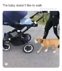"Bless Up, Dogs, and Facebook: The baby doesn't like to walk  @DrSmashlove HAPPY TUESDAY BELOVEDS A LOT OF U ARE MAD AT ME FOR GOING PRIVATE I AM TRULY SORRY BUT A LOT OF PEOPLE OSAMA BEEN STALKIN AND ALL THEY HAVE TO DO IT HIT THAT FOLLOW AND MAGICALLY MY FOLLOWERS OSAMA BEEN HOPPIN LMAO SORRY BUT IT'S FREE! ""Okay smash but my grandma isn't gonna join instagram any time soon and she misses your dogs"" WELL DANG 😢. LOOK. WE KNOW MARTHA GOT A FACEBOOK LOL. PLEASE ASK HER TO MAKE A IG. IT'S ONE EXTRA STEP. 😁 LOVE YALL! BLESS UP 😍😂😂 p.s. Fvck Bin Laden. I'm not tryina make light of all that. It just rhymed pls relax I love y'all!"