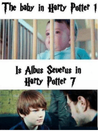 o my gawd: The baby in Harty Potter  ls Albus Severus in  Harty Potter 7 o my gawd