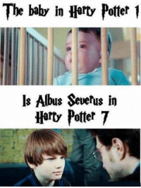 o my gawd: The baby in Harty Potter  ls Albus Severus in  Horty Potter 7 o my gawd