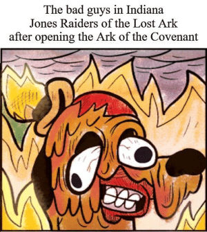 Bad, Meme, and Lost: The bad guys in Indiana  Jones Raiders of the Lost Ark  after opening the Ark of the Covenant I feel like this meme is good.