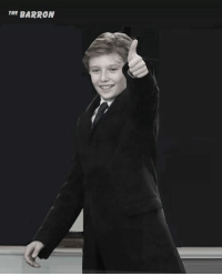 Memes, Barron Trump, and 🤖: THE BARRON Barron Trump is the most lucky guy in America. He's Young, Handsome, Intelligent, Popular, His Father is President of the USA and his Mom is the Most Beautiful First Lady America ever had. He is the Whole Package!