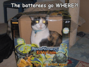 Omg, Tumblr, and Blog: The batterees go WHERE?!  RENSFORMER  Now with light up aation eyes omg-images:Kittytron