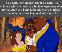 https://t.co/otRBdFARmW: The Beast, from Beauty and the Beast, is a  chimera with the head of a buffalo, eyebrows of a  gorilla, body of a bear, jaws and mane of a lion,  tusks of a boar, and legs and tail of a wolf. https://t.co/otRBdFARmW