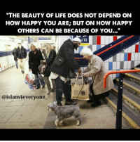 "Baked, Journey, and Memes: THE BEAUTY OF LIFE DOES NOT DEPEND ON  HOW HAPPY YOU ARE BUT ON HOW HAPPY  OTHERS CAN BE BECAUSE OF YOU...""  d 10  Caislam4everyone This story is about a beautiful, expensively dressed lady who complained to her psychiatrist that she felt that her whole life was empty, it had no meaning. So, the lady went to visit a counselor to seek out happiness. The counselor called over the old lady who cleaned the office floors. The counselor then said to the rich lady ""I'm going to ask this lady here to tell u how she found happiness. All I want u to do is listen to her."" So the old lady put down her broom and sat on a chair and told her story: ""Well, my husband died of malaria and three months later my only son was killed by a car. I had nobody. I had nothing left. I couldn't sleep, I couldn't eat, I never smiled at anyone, I even thought of taking my own life. Then one evening a little kitten followed me home from work. Somehow I felt sorry for that kitten. It was cold outside, so I decided to let the kitten in. I got some milk, and the kitten licked the plate clean. Then it purred and rubbed against my leg and, for the first time in months, I smiled. Then I stopped to think, if helping a little kitten could make me smile, may be doing something for people could make me happy. So, the next day I baked some biscuits and took them to a neighbor who was sick in bed. Every day I tried to do something nice for someone. It made me so happy to see them happy. Today, I don't know of anybody who sleeps and eats better than I do. I've found happiness, by giving it to others."" When she heard this, the rich lady cried. She had everything that money could buy, but she had lost the things which money cannot buy. ""The beauty of life does not depend on how happy you are; but on how happy others can be because of you..."" Happiness is not a destination, it's a journey. Happiness is not tomorrow, it is now. Happiness is not dependency, it is a decision. Happiness is what you are, not what you have."