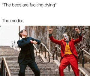 Bee Movie warned us all: The bees are fucking dying*  The media: Bee Movie warned us all