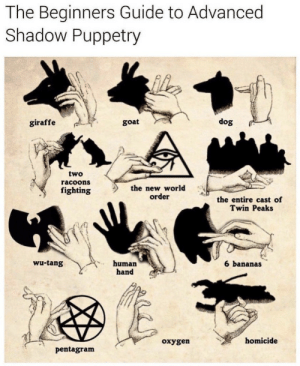 tang: The Beginners Guide to Advanced  Shadow Puppetry  giraffe  goat  dog  two  racoons  fighting  the new world  order  the entire cast of  Twin Peaks  wu-tang  human  hand  6 bananas  oxygen  homicide  pentagram