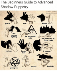 Goat, Twins, and Banana: The Beginners Guide to Advanced  Shadow Puppetry  Osean-speezy  Casleepinthemuseum  goat  doggo  giraffe  two  racoons  the new world  fighting  order  the entire cast of  Twin Peaks  wu-tang  human  6 bananas  hand  homicide  oxygen  Pentagram Good to know! @asleepinthemuseum