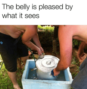 [OC] It's smiling so beautifully: The belly is pleased by  what it sees [OC] It's smiling so beautifully