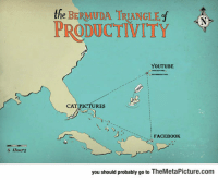 """Bermuda Triangle, Club, and Facebook: the BERMIUDA TRIANGLEf N  PRODUCTIVITY  YOUTUBE  CAT PICTURES  FACEBOOK  4 Hour's  you should probably go to TheMetaPicture.com <p><a href=""""http://laughoutloud-club.tumblr.com/post/155892754462/real-bermuda-triangle"""" class=""""tumblr_blog"""">laughoutloud-club</a>:</p>  <blockquote><p>Real Bermuda Triangle</p></blockquote>"""