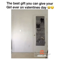 Happy Valentine's Day everyone 😂 (Follow us @hoodclips) Via:faustinooo__ hoodcomedy hoodclips comedy: The best gift you can give your  Girl ever on valentines day  HOODCLIPS Happy Valentine's Day everyone 😂 (Follow us @hoodclips) Via:faustinooo__ hoodcomedy hoodclips comedy