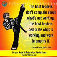 Facebook, Memes, and Work: The best leaders  don't complain about  what's not working,  the best leaders  celebrate what is  working and work  to amplify it.  KwanlnNim Dr. Ronald Stone  Korean Hapkido Federation HaeMukwan  www.HaeMukwan.com Your thought for the day brought to you by www.facebook.com/koreahapkidofederationhaemukwan/