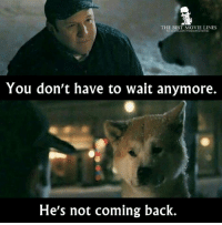 Memes, 🤖, and Tales: THE BEST MOVIE LINES  facebook.com/Thebestmovicino  You don't have to wait anymore.  He's not coming back. Hachi: A Dog's Tale (2009)