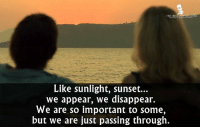 Memes, Best, and Movie: THE BEST MOVIE LINES  Like sunlight, sunset...  we appear, we disappear.  We are so important to some,  but we are just passing through. - Before Midnight 2013