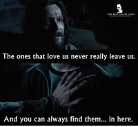 - Harry Potter and the Prisoner of Azkaban 2004: THE BEST MOVIE LINES  The ones that love us never really leave us.  And you can always find them...  in here. - Harry Potter and the Prisoner of Azkaban 2004