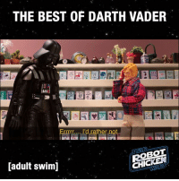 Darth Vader, Memes, and Sith: THE BEST OF DARTH VADER  SEE  rrrr... I'd rather not  OBOT  CHICKEd  [adult swim] 4 timeless Sith goofs. #RogueOne #StarWars