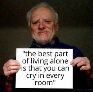 "Being Alone, Memes, and Best: ""the best part  of living alone  is that you can  Cry in everV  room"""