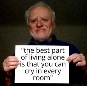 "Being Alone, Best, and Space: ""the best part  of living alone  is that you can  cry in every  room"" A lot of space"