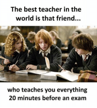 Memes, Teacher, and Best: The best teacher in the  world is that friend...  who teaches you everything  20 minutes before an exam Follow our new page - @sadcasm.co