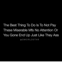 "Memes, Wshh, and Star: The Best Thing To Do ls To Not Pay  These Miserable Mfs No Attention Or  You Gone End Up Just Like They Ass  Q WORLD STAR ""Misery Loves Company..."" ⚔️ @QWorldstar FlyHigher PositiveVibes WSHH"