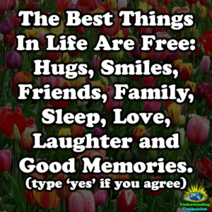 Family, Friends, and Life: The Best Things  In Life Are Free:  Hugs, Smiles,  Friends, Family,  Sleep, Love,  Laughter and  Good Memories.  (type 'yes' if you agree)  Understanding  Compassion <3