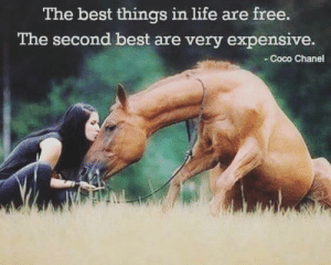 ❤️🐴 Happy Friday! #TGIF: The best things in life are free.  The second best are very expensive.  -Coco Chanel ❤️🐴 Happy Friday! #TGIF
