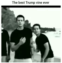 Funny, Lol, and Vine: The best Trump vine ever Classic clip of the day lol