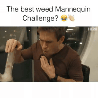Memes, Mannequin, and 🤖: The best weed Mannequin  Challenge?  HERB Wait until the end 😂 Credit: @cannabislongley