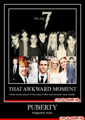 Pubertyhttp://omg-humor.tumblr.com: The big  THAT AWKWARD MOMENT  When every person in the Harry Potter cast became sexy beasts.  TASTE OF AWESOME.COM  PUBERTY  Hogwarts style.  TASTE OF AWESOME.COM Pubertyhttp://omg-humor.tumblr.com