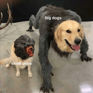 the bigger they are the gooder the boy: the bigger they are the gooder the boy