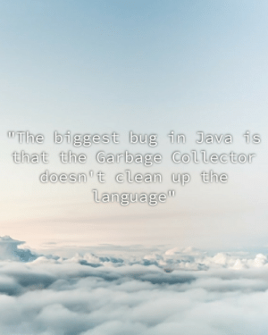 "My Compilation Professor, everyone: ""The biggest bug in Java is  that the Garbage Collector  doesn't clean up the  language"" My Compilation Professor, everyone"