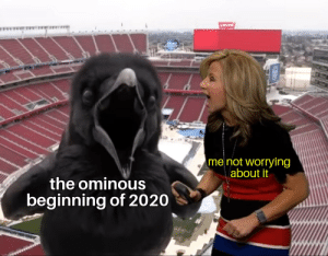 The Bird of Death awaits...but not for this meme template! Invest!: The Bird of Death awaits...but not for this meme template! Invest!