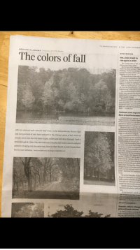 "Doe, Donald Trump, and Doug: THE BIRMINGHAM NEWS AL.COM FRIDAY, NOVEMBER  AROUND ALABAMA CHEAHA STATE PARK  The colors of fall  STATEWIDE  Sen. Jones ready to  run again in 2020  seek re-election in 2020  Sen. Doug Jones, D-Ala., w  Zach Jones with National  reported Jones said he's ""alre  running"" in the race to keep  won in December 2017 in an  Republican Roy Moore.  No Republicans have offic  announced intentions to cha  though Rep. Bradley Byrne,  said he is gauging support fr  before deciding on his 2020p  A Byrne spokesperson con  AL.com the congressman wa  considering"" a run for the Se  Another potential candida  sions, who vacated the Senat  appointed U.S. Attorney Gen  dent Donald Trump.  Sessions resigned under pr  week and questions have rise  bama Republican would mak  his former post. Sources close  said he is considering challen  2020. Leada Gore  Assistant state superin  faces sexual harassmer  A federal lawsuit against As  Superintendent Tommy Glass  he sexually harassed and disc  against his female assistant w  superintendent of Chilton Cou  Glasscock was named head  and technical education at the  department of education in Ju  After an unusual early autumn heat wave, cooler temperatures, shorter days  and long periods of rain have ushered in the vibrant colors of fall. Even on  cloudy, rainy days the rich hues of gold, yellow and red shine through. I took a  drive through St. Clair, Clay and Cleburne Counties this week to see the autumn  splendor dodging rain the entire way. Here is what I found around Cheaha State  Park in east Alabama. Words and photos by Joe Songer, jsongereal.com  began work there in August.  AL.com had not received a  from Glasscock or any membe  Chilton County Board of Educ  to publication of this article.  State Superintendent Eric  AL.com in an email last Frida  not aware of either an Equal E  Opportunity Commission con  any of the allegations prior to  ing Glasscock for the position  According to the lawsuit fil  month, Allison P. Smith said  employed in various roles by  County Board of Education a  assistant from February 2015  April 2017. During that time  alleges Glasscock subjected h  come, severe and pervasive s  ment"" and that the harassm  stant.  The seven-member Chilt  Board of Education is being  tiple counts as Smith allege  bers did not take any action  reported Glasscock's action  Smith is suing Glasscock  invasion of privacy and as  tery  In the lawsuit, Smith as  award back pay, lost wage  tory and punitive damage  and attorneys' fees but doe  Trisha Powell C  amou  MONTGOMERY  Inmate, others charge  prison fraud scheme  A state inmate is among th  with conning another inmate  paying a fake law firm to work"