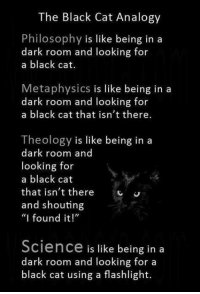 "Memes, Flashlight, and Science: The Black Cat Analogy  Philosophy is like being in a  dark room and looking for  a black cat.  Metaphysics is like being in a  dark room and looking for  a black cat that isn't there.  Theology is like being in a  dark room and  looking for  a black cat  that isn't there  and shouting  ""I found it!""  Science is like being in a  dark room and looking for a  black cat using a flashlight. Check out our secular apparel shop! http://wflatheism.spreadshirt.com/"