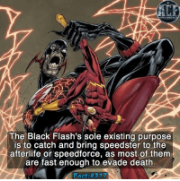 Memes, 🤖, and Cameo: The Black Flash's sole existing purpose  is to catch and bring speedster to the  afterlife or speedforce, as most of them  are fast enough to evade death  Fact - Imagine seeing him, knowing you'd probably be the one to die. • • - QOTD?!: Did you enjoy his cameo in LOT?!